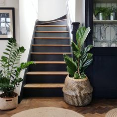 hallway decorating 348888302382454849 - We asked the experts for their no-fail picks. Black Stairs, Black Painted Stairs, Painted Stair Risers, Painted Staircases, Staircase Makeover, Staircase Remodel, Trending Paint Colors, House Stairs, Hallway Decorating