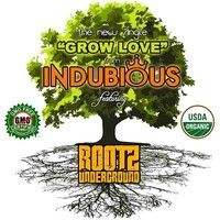 Indubious feat. Rootz Underground – Grow Love [2014] by reggaeville on SoundCloud