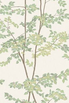 63 of the best wallpapers and Rita Konig's advice on choosing them