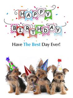 Send Free Carnival Fireworks Happy Birthday Card to Loved Ones on Birthday & Greeting Cards by Davia. It's free, and you also can use your own customized birthday calendar and birthday reminders. Happy Birthday Greetings Friends, Cute Happy Birthday, Happy Birthday Wishes Cards, Happy Birthday Flower, Cool Birthday Cards, Happy Birthday Images, Birthday Pictures, Birthday Messages, Birthday Greeting Cards