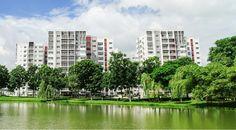 Thiên nhiên xanh trong lòng thành phố hiện đại