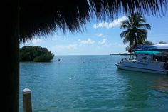 Check out this awesome listing on Airbnb: Casa La Isla (Old Town) in Key West