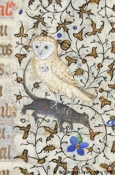 Owl with mouse in its talons | Book of Hours | France, Paris | ca. 1420–1425 | The Morgan Library & Museum