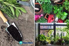 Give your garden something special for summer with a DIY fire pit. These outdoor fire pit ideas include designs for any size of garden, so get DIY-ing! Plastic Bottle Greenhouse, Diy Plastic Bottle, Diy Greenhouse, Plastic Ware, Vertical Garden Diy, Easy Garden, Garden Bar, Garden Ideas, Patio Ideas
