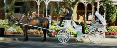 Niagara Falls Visitor Tips Horse Drawn, Niagara Falls, Horses, River, History, Tips, Animals, Animaux, Horse