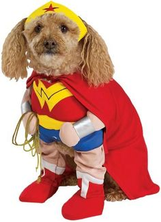 """$11.06-$20.95 Wonder Woman Pet Costume - Now your wonder dog can be Wonder Woman! This Wonder Woman Pet Costume includes a headpiece, a detachable cape, and a character inspired jumpsuit with attached arms and belt. Your dog is sure to look adorable in this superhero character pet costume.  Sizes: Small (10-12"""" neck to hind) Medium (14-16"""" neck to hind) Large (18-20"""" neck to hind) XLarge (22-24""""  ..."""