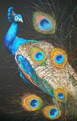 Peacock, cm, oil on canvas Science And Nature, Peacock, Oil On Canvas, Wildlife, Animals, Animales, Animaux, Peafowl, Painted Canvas
