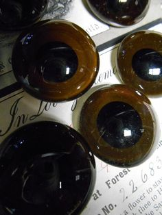 Spooky Taxidermy Glass Eyes Large Vintage by GothicRoseAntiques, $35.00