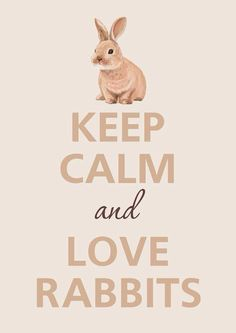 Bunny Cottage / keep calm quote in brown tan cream Funny Bunnies, Baby Bunnies, Cute Bunny, Bunny Rabbits, Lapin Art, Baby Animals, Cute Animals, Bunny Care, Some Bunny Loves You