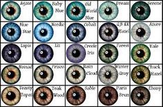 eye color - Google zoeken