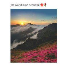 What A Wonderful World, Beautiful World, Beautiful Places, Amazing Photography, Nature Photography, Photography Aesthetic, Photography Poses, Pretty Pictures, Cool Photos