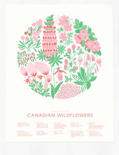 Canadian Wildflowers screen printed poster in Pink by Cabin Journal Poster Art, Screen Print Poster, Floral Illustrations, Illustration Art, Illustrations Posters, Nouveau Tattoo, How To Dye Fabric, Dyeing Fabric, Applique Tutorial