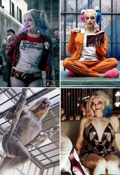"Margot Robbie ✾ as Harley Quinn ☠ in ""Suicide Squad"" Harley Quinn Tattoo, Der Joker, Harley Quinn Drawing, Joker And Harley Quinn, Joker Cosplay, Harley Quinn Cosplay, Joker Costume, Harley Quinn Smith, Harley Quinn Comic"