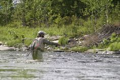 Nymphing Techniques - European or Strike Indicator | The Fly Fishing Basics