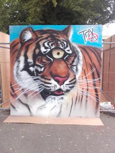 #Gloucester #Street #Artist #Trix completed work is called #Cyclopstiger at #Hypefest.