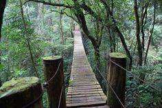 Puente colgante en El Salvador