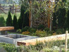 Małymi krokami bo własnymi ręcami... :* - strona 1629 - Forum ogrodnicze - Ogrodowisko
