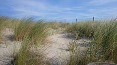 Aanrader met jonge kinderen: een ochtendje strand!