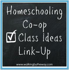 Walking by the Way's Homeschooling Co-op Class Ideas Link Up