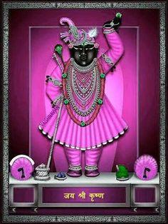 Señor Krishna, Krishna Leela, Krishna Statue, Jai Shree Krishna, Radha Krishna Photo, Krishna Photos, Shree Ram Images, Hanuman Pics, Indian Traditional Paintings