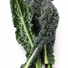 Move over moo juice: Kale contains more calcium per calorie than milk.