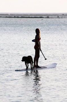 http://ecohubmexico.com/surf-cancun-360-surf-school-cancun/