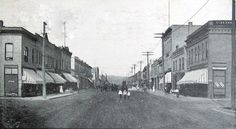 Chestnut Street, Virginia Minnesota, 1909