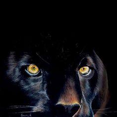 Black panther - pastel drawing