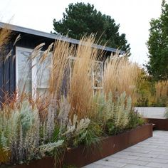 KJELD SLOT: Mere naturlighed med græsser i sommerhushaven Landscape Architecture, Landscape Design, Xeriscaping, Contemporary Garden, Rooftop Garden, Garden Spaces, Lounges, Front Yard Landscaping, Garden Inspiration