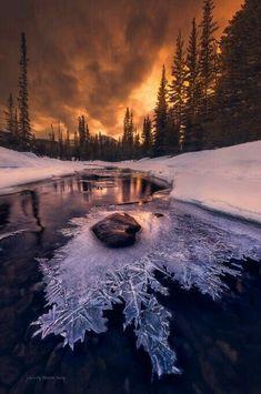#Beautifulthings #Winter #Snow #Frozen #Ice