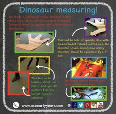 We used the interest in dinosaurs to investigate measuring and specifically length! We looked at dinosaur footprints - including life-sized T-Rex and Velociraptor footprints! Early Years Teacher, Early Years Maths, Eyfs Activities, Dinosaur Activities, T Rex Footprint, Dinosaurs Eyfs, Dinosaur Play, Car Themes, How Many Kids