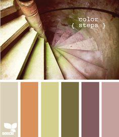 color steps