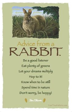 Each bookmark says: Advice from a Rabbit Be a good listener Eat plenty of greens Let your dreams multiply Hop to it! Know when to be still Spend time in nature Somebunny Loves You, Animal Spirit Guides, Animal Medicine, Power Animal, Animal Magic, Good Listener, Animal Totems, True Nature, Good Advice