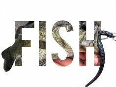 Very good #work by @_jlongoria  Photo credit.... MYSELF    @bassbros_tv @pyrofishing @gsoutdoorsllc @crawfish_creek_custom_lures #bassbrostv #bass #bassfishing #fish #fishing #fishin #ifish #instafish #fl #fisherman #florida #pond #lake #fishingpicoftheday #catchoftheday #pic #picoftheday #photo #photooftheday #nature #outdoors #instanature #naturelovers #abu #abugarcia #instagram #gsoutdoors #naturephotography #bestoftheday
