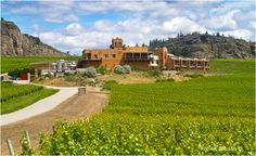 Burrowing Owl Winery Osoyoos, BC   So excited....wine orders anyone?