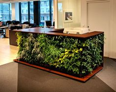 Green Design Ideas Inspired By Nature Bored Panda - Living In An Urban Environment Certainly Has Its Many Advantages But Most Of Us City Folk Still Pine For The Great Outdoors And If Weekend Or Vacation Outings Just Arent Enough There Are Plen Green Desk, Green Office, Modern Interior Design, Furniture Design, Table, Home Decor, Wall Planters, Succulent Planters, Concrete Planters