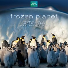 "George Fenton's enchanting and lush soundtrack to BBC TV's landmark series narrated by David Attenborough     Performed by George Fenton and The BBC Concert Orchestra     ""One of the key challenges we face as wildlife filmmakers is to try and transport our audiences to the wonderful wildernesses we experience first hand. George Fenton's wonderful score was a vital tool to help us take people to the poles - a place beyond imagination""  - Alastair Fothergill, Producer of Frozen Planet."