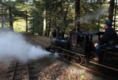 Redwood Valley Railway, Tilden Park, Berkeley: Ride the rails on an old-school steam train