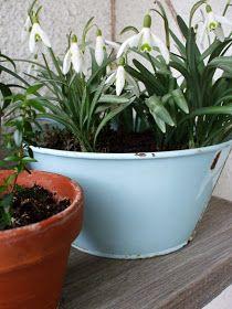 Víkendový dom: Polica na kvety. Planter Pots