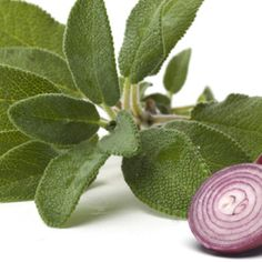 Native to the Mediterranean Basin, sage is an herb that was highly prized by the Romans and the Greeks to preserve food prior to the advent of refrigeration. Today, sage remains a wise choice for a host of health benefits.