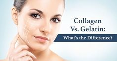 Collagen vs Gelatin: What's the Difference? | Swanson Health Products