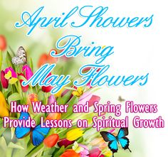 The scriptures contain surprisingly little about the changing of seasons, and even the great blooms of spring. This is because the Testaments were written in places that were dry and often barren—not the like paradises of the South Pacific! Still,