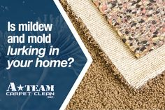 Carpet Repair, Water Damage Repair, Grout Cleaner, Before And After Pictures, How To Clean Carpet, A Team, Oklahoma, Carpets, Cleaning Hacks