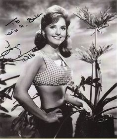 That necessary. Dawn wells tina louise nude can not