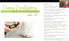 Lemon Eucalyptus, Doterra, Diffuser, Essential Oils, How To Apply, Essential Oil Uses, Doterra Essential Oils, Essential Oil Blends