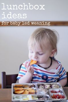 Lunchbox Ideas #1 for Baby Led Weaning. This is the first in the series of lunchbox ideas. I'll add a new box once or twice a week, as I get inspired by something. #blw #babyledweaning