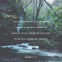 """Jesus replied, """"I am the bread of life. Whoever comes to me will never be hungry again. Whoever believes in me will never be thirsty."""""""