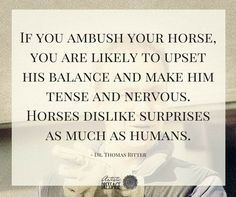 """""""If you ambush your horse, you are likely to upset his balance and make him tense and nervous. Horses dislike surprises as much as humans."""" - Thomas Ritter artisticdressage.com"""