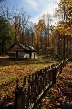 Cabin life in the Great Smoky Mtns.
