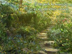 #wisdom #journey #quote
